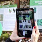 Virtualne šetnje Kamačnikom